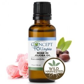 Rose in Jojoba Essential Oil