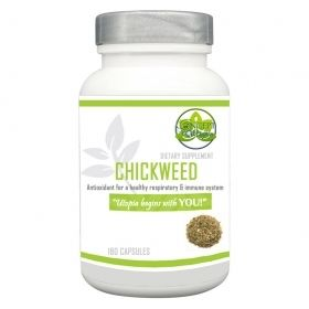 Chickweed Herb Supplement 500mg