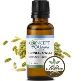 Wild Sweet Fennel Essential Oil