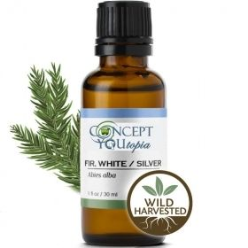 Silver White Fir Essential Oil