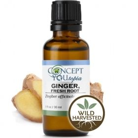 Fresh Root Ginger Essential Oil