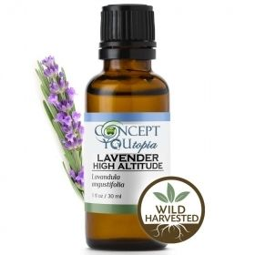 Wild Harvested Lavender High Altitude Essential Oil